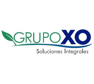 Grupo XO